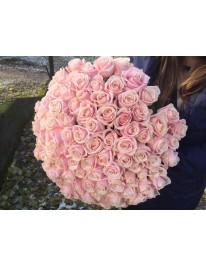 Букет из 101 розы Свит Доломити